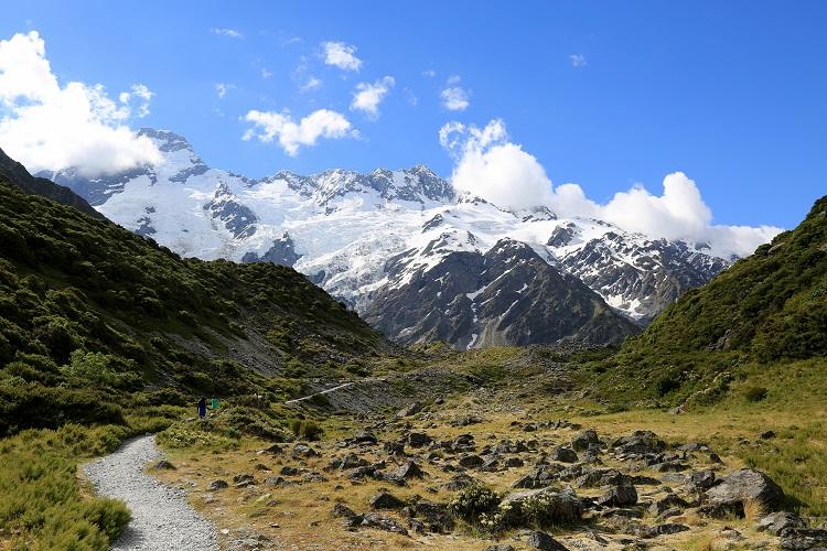 친환경의 활기찬 맥박, 뉴질랜드